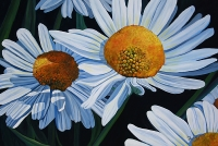 Daisy's Daisies SOLD