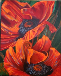 Orange Poppies SOLD