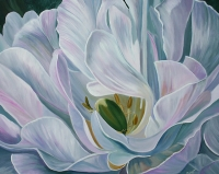 White Tulip SOLD