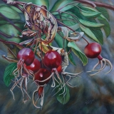 Big Hill Rose Hips  $900  Framed