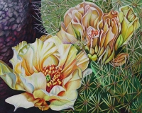 Prickly Pear In Bloom  $800 Framed
