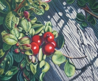 Wild Cranberries - SOLD